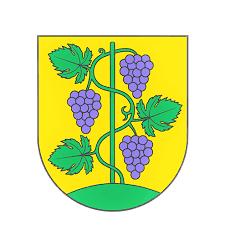 korepetycje angielski Zbrosławice